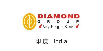 金球合作伙伴-印度India
